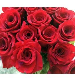 Red Roses (50cm)